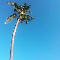 Bali fashion and lifestyle blog